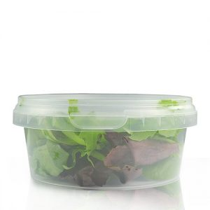 300ml disposable food container