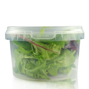 480ml disposable food container