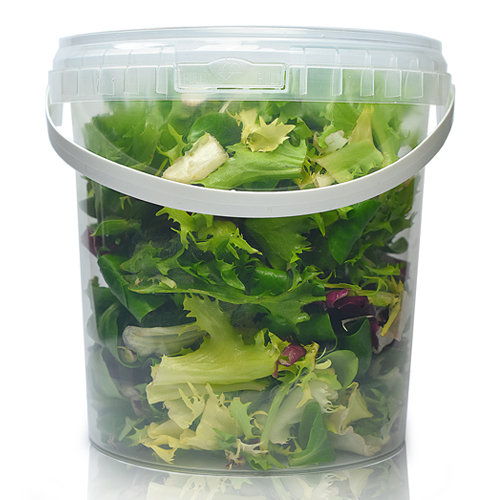 1000ml Clear Plastic Food Pot With Lid